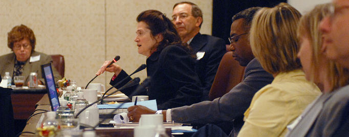 Advisory committee member speaking at a microphone