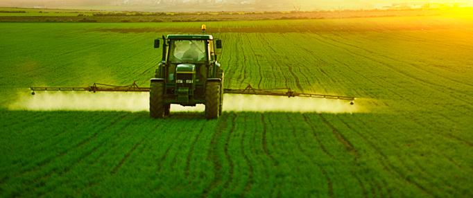 FDA's Pesticide Program