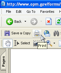 Screenshot of cursor over print button in a browser's PDF reader toolbar