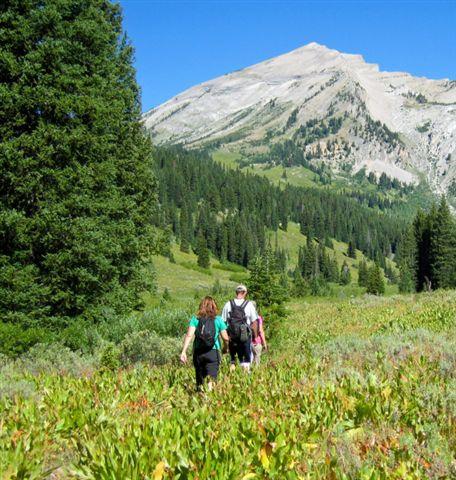 Visitors hiking on bridger-teton national forest