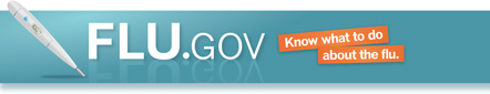 logo for HHS website Flu.gov—click to view website