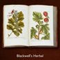 Turning the Pages: Blackwell's Herbal