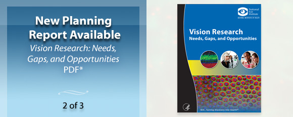 New Planning Report Available