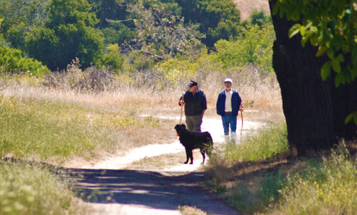 Charles Cody, Mike Bolion and dog 'Flattie' walk one of the trails along Toro Creek Road in Salinas, CA.