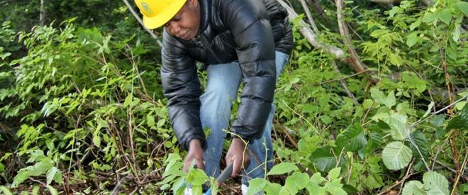 Volunteer clearing trail.
