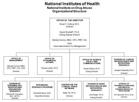 2013 Organizational Structure
