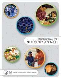 Cover of NIH Obesity Research Strategic Plan