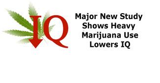 New Study shows drop in IQ among heavy marijuana using teens