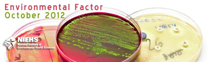 October issue of Environmental Factor