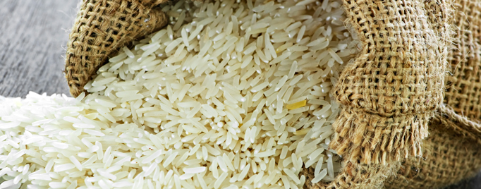 FDA Looks for Answers on Arsenic in Rice - (FEATURE)