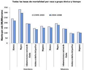 Gráfico de barras muestra índices de muertes por cáncer según raza y etnia; barras azul claro indican el periodo de 1999 a 2003 y barras azul oscuro indican el periodo de 2004 a 2008