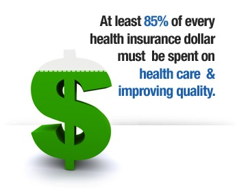 At least 85% of every health insurance dollar must be spent on health care and improving quality