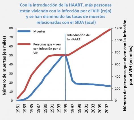 La gráfica muestra que con la introducción de la HAART en 1995, el número de muertes relacionadas con el VIH disminuyó en casi 30,000 en un periodo de más de 2 años, y se mantuvo estable hasta el 2007. Asimismo, el número de personas viviendo con el VIH aumentó en casi 400,000 personas durante ese periodo de tiempo.