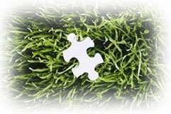 Grass with puzzle piece