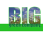 Big Green Company