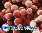 MRSA Awareness Video