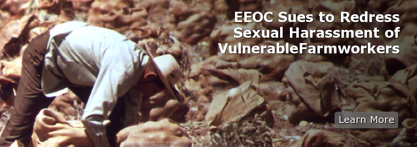 EEOC Sues to Redress Sexual Harassment of Vulnerable Farmworkers