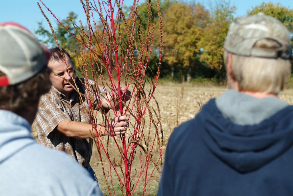 Rend Lake College President Holds a Tree