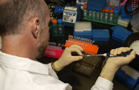 A cancer researcher prepares a DNA sample for sequencing.