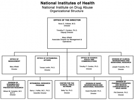 2011 NIDA Organizational Structure, link below for full description