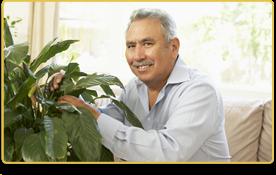 Un hombre mayor arregla las plantas en la casa