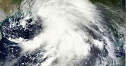 Tropical storm success story thumbnail