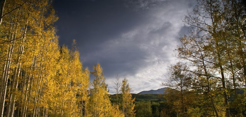 Photo: It's fall colors time! You can take advantage of this beautiful time of year by finding a forest near you on the Forest Service fall colors website! Visit: http://www.fs.fed.us/fallcolors