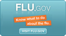Know What to Do About the Flu, Visit Flu.gov