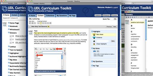 Screenshots of UDL Curriculum Tookit