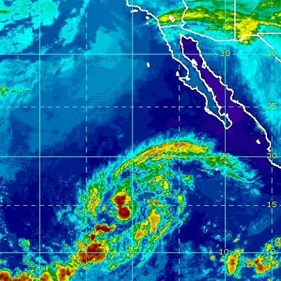 Photo: Tropical Storm Olivia strengthened a bit overnight. Maximum sustained winds are now 60 mph, and additional strengthening is forecast. Olivia could become a hurricane today or Monday before weakening begins Monday Night.   The storm is centered this morning over the open waters of the eastern North Pacific Ocean about 930 miles southwest of the southern tip of Baja California. Its west-northwest movement should become northwest later today, then north tonight and Monday. It is not a threat to land. Get the latest on this storm, including graphics, on the NOAA NHC website at www.hurricanes.gov