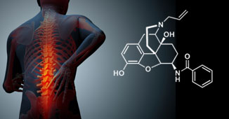 Image of back pain and molecule