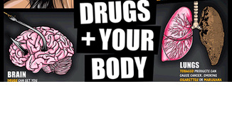Drugs and Your Body Poster