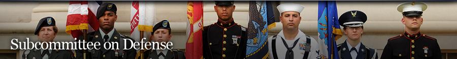 Defense Banner