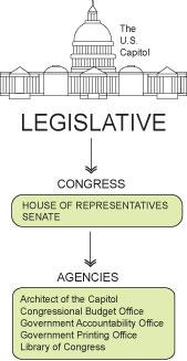 The Legislative Branch