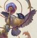 Birds of the Brumidi Corridors crop