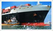 Small Business Trade and Exporting