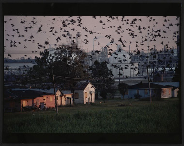 Reveilletown, La. Photograph by Sam Kittner, November 1988.