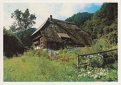Farm house in the Black Forest