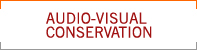 Audio-Visual Conservation