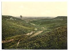 [Chobham Ridges, Camberley, England]  (LOC)