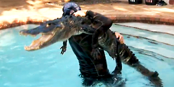 Alligator trappers risk life and limb (GMA)