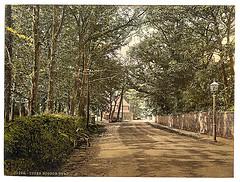 [Upper Bognor Road, Bognor, England]  (LOC)