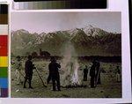 color film copy transparency