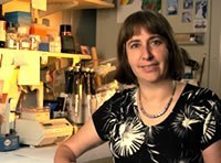 Photo: Check out the new GenomeTV video on the Genetics of Parkinson's Disease. Ellen Sidransky, M.D., from NHGRI's Medical Genetics Branch, explains how studies of rare diseases provide an important window into common complex disorders. http://qoo.ly/5my5
