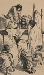 Das Illustrirte Mississippithal