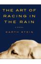 Art of Racing in the Rain, The