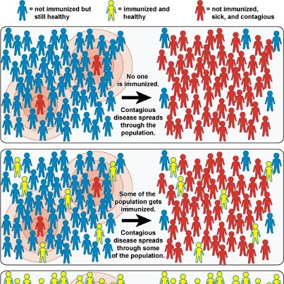 Photo: Community Immunity from the National Institute of Allergy and Infectious Diseases (NIAID)