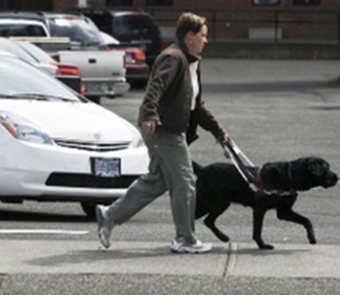 Image of blind woman with service dog crossing a street