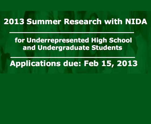 Summer research opportunities for underrepresented high school and undergraduate students