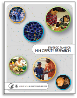 The Strategic Plan for NIH Obesity Research